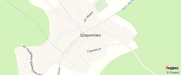 Молодежная улица на карте деревни Шарипово с номерами домов