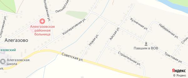 Новая улица на карте села Алегазово с номерами домов
