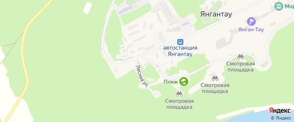 Улица Салавата Юлаева на карте села Янгантау с номерами домов