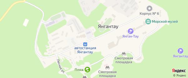 Центральная улица на карте села Янгантау с номерами домов