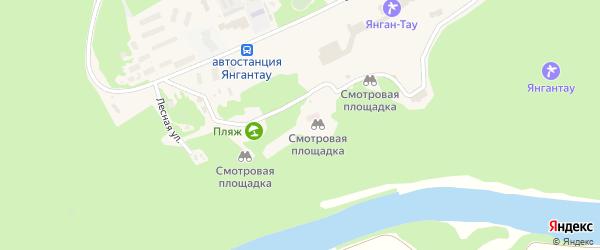 Лесная улица на карте села Янгантау с номерами домов