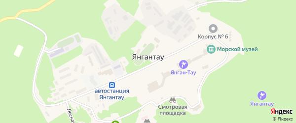Школьная улица на карте села Янгантау с номерами домов