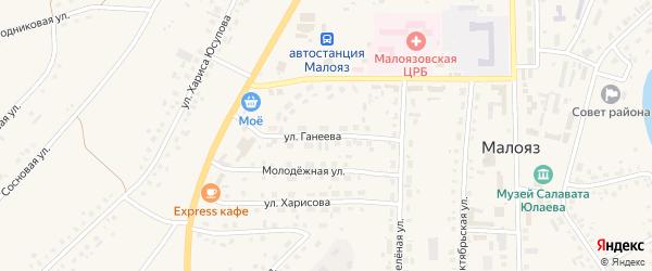 Улица Ганеева на карте села Малояза с номерами домов