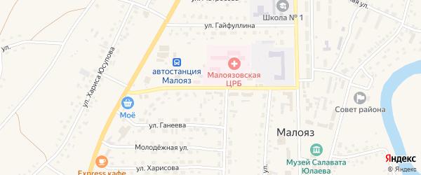 Улица 60 лет СССР на карте села Малояза с номерами домов
