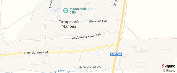 Улица Д.Халикова на карте села Татарского Малояза с номерами домов