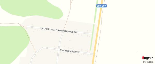 Улица Фариды Камалетдиновой на карте села Татарского Малояза с номерами домов