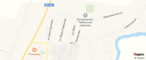 Улица Мира на карте села Малояза с номерами домов