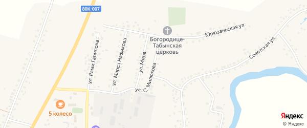 Улица С.Милюкова на карте села Малояза с номерами домов