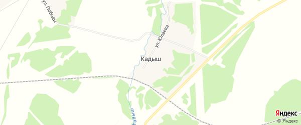 Карта деревни Кадыша в Башкортостане с улицами и номерами домов