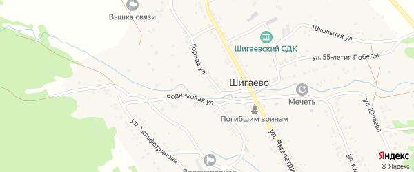 Речная улица на карте села Шигаево с номерами домов