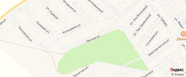 Лесная улица на карте села Месягутово с номерами домов