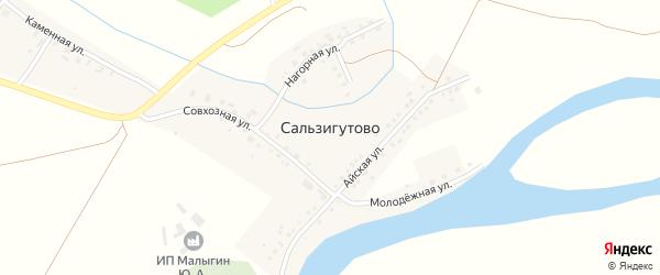 Каменная улица на карте деревни Сальзигутово с номерами домов