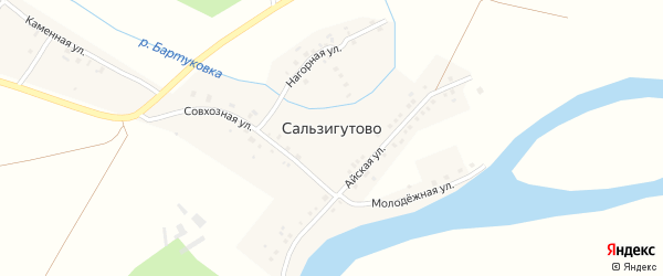 Совхозная улица на карте деревни Сальзигутово с номерами домов