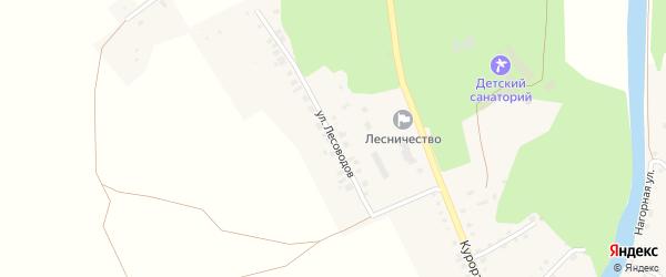 Улица Лесоводов на карте Большеустьикинское села с номерами домов