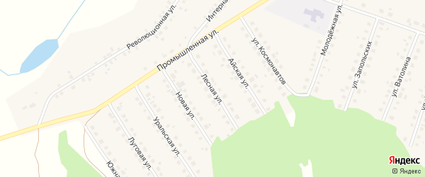 Лесная улица на карте Большеустьикинское села с номерами домов