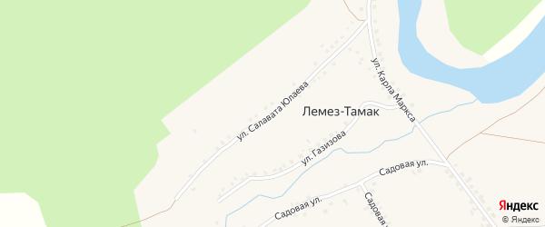 Улица Салавата Юлаева на карте деревни Лемеза-Тамака с номерами домов