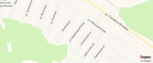 Улица Березовая роща на карте Большеустьикинское села с номерами домов