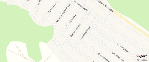 Цветочная улица на карте Большеустьикинское села с номерами домов