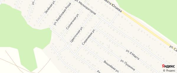 Сиреневая улица на карте Большеустьикинское села с номерами домов