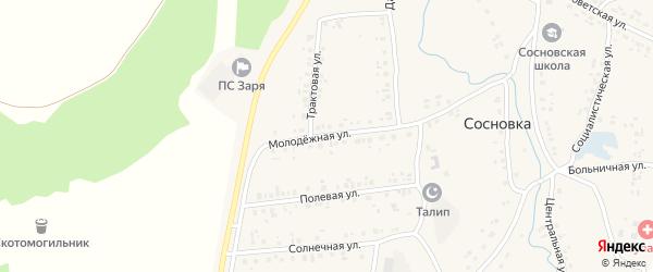 Молодежная улица на карте села Сосновки с номерами домов