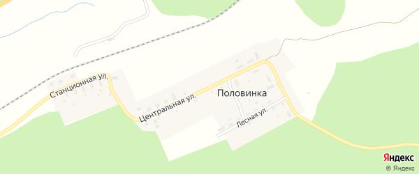 Центральная улица на карте поселка Половинки с номерами домов