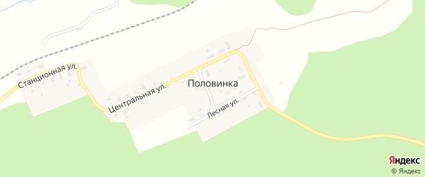 Станционная улица на карте поселка Половинки с номерами домов