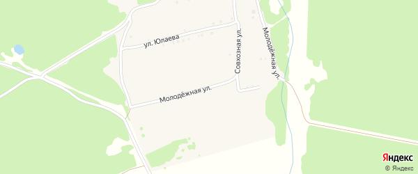 Молодежная улица на карте деревни Черновки с номерами домов
