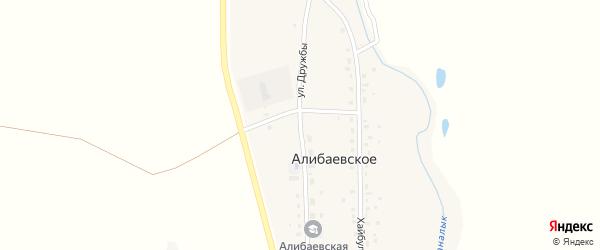 Улица Дружбы на карте Алибаевского села с номерами домов
