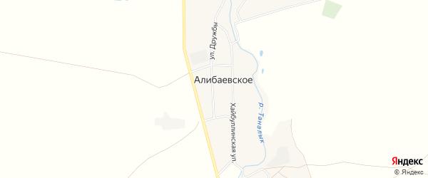 Карта Алибаевского села в Башкортостане с улицами и номерами домов