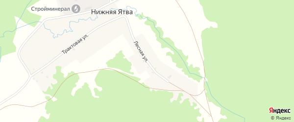 Лесная улица на карте села Нижняя Ятва (Сланцы) с номерами домов