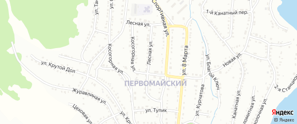 Лесная улица на карте деревни Баскана с номерами домов