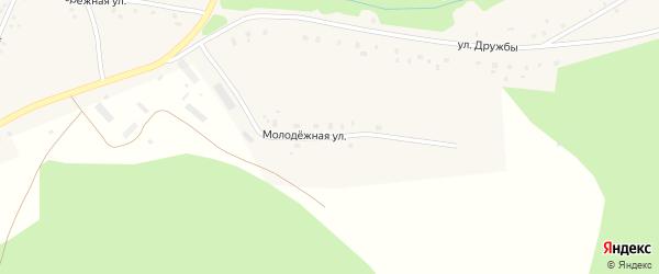 Молодежная улица на карте деревни Куршалино с номерами домов