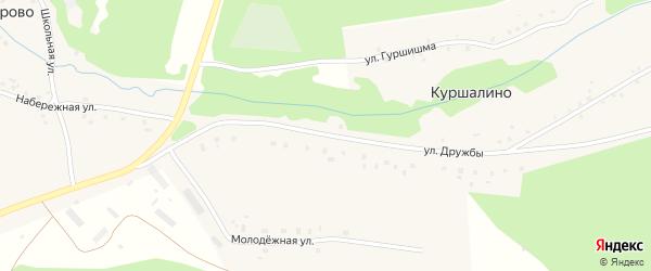 Улица Дружбы на карте деревни Куршалино с номерами домов