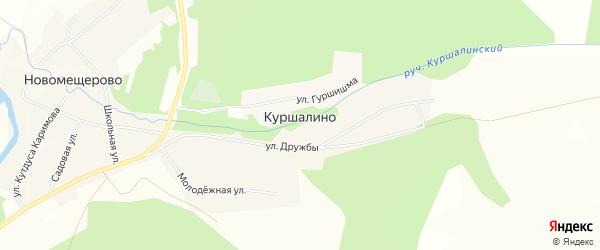 Карта деревни Куршалино в Башкортостане с улицами и номерами домов