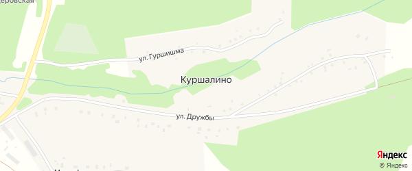 Улица Гуршишма на карте деревни Куршалино с номерами домов