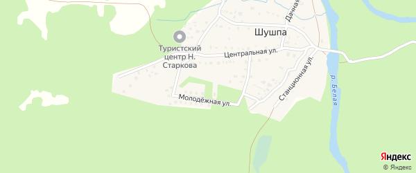 Молодежная улица на карте деревни Шушпы с номерами домов