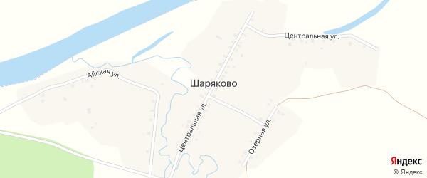Центральная улица на карте деревни Шаряково с номерами домов