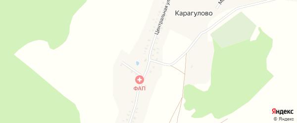 Центральная улица на карте деревни Карагулово с номерами домов