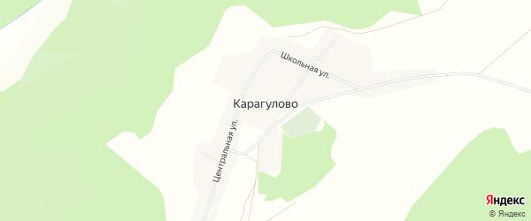 Карта деревни Карагулово в Башкортостане с улицами и номерами домов