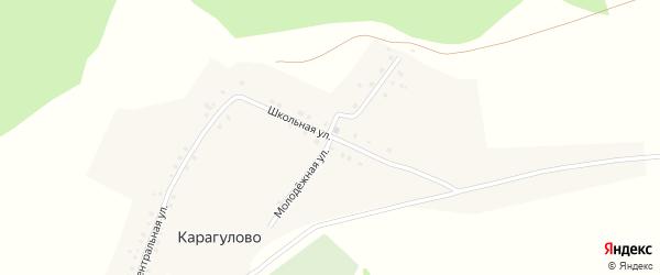 Молодежная улица на карте деревни Карагулово с номерами домов