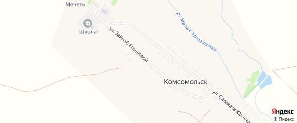 Улица Зайнаб Биишевой на карте деревни Комсомольска с номерами домов