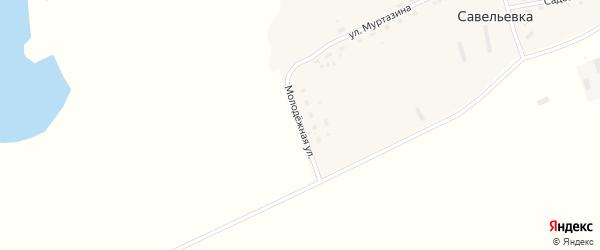 Молодежная улица на карте села Савельевки с номерами домов