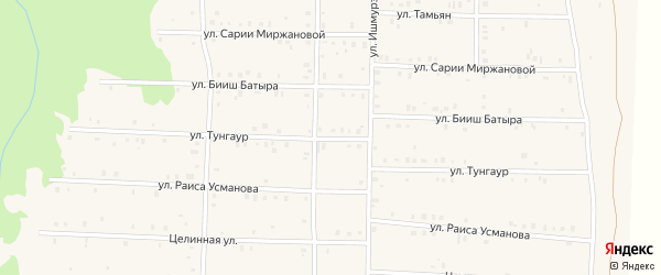 Улица Тунгаур на карте села Аскарово с номерами домов