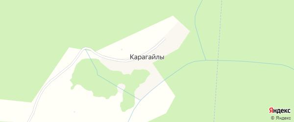 Лесная улица на карте деревни Карагайлы с номерами домов