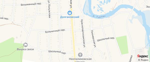 Больничный переулок на карте села Тирлянского с номерами домов