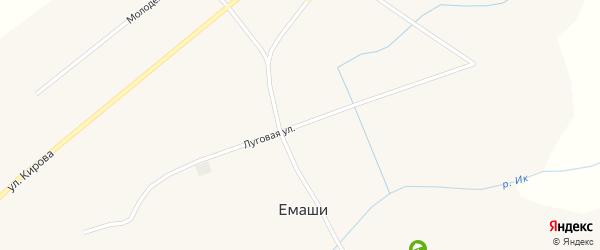 Луговая улица на карте села Емашей с номерами домов