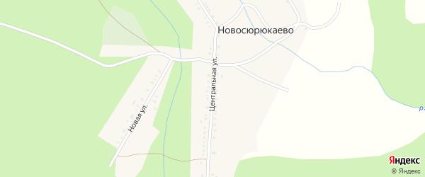 Центральная улица на карте деревни Новосюрюкаево с номерами домов