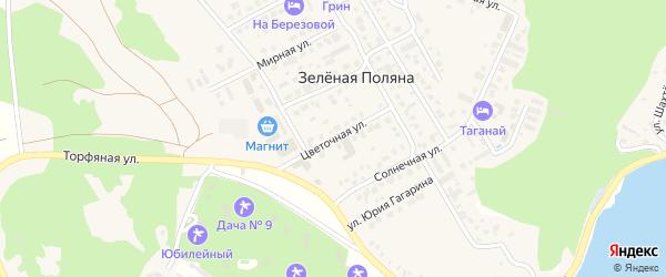 Цветочная улица на карте деревни Зеленая Поляна с номерами домов
