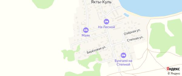 Улица Ахмет Заки Валиди на карте деревни Якты-Куль с номерами домов