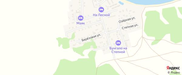 Березовая улица на карте деревни Якты-Куль с номерами домов